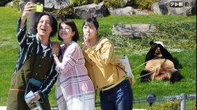 科捜研の女 season19(2019/05/30放送分)第07話