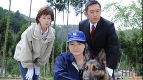 科捜研の女 season8 第07話
