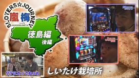 嵐・梅屋のスロッターズ☆ジャーニー #528
