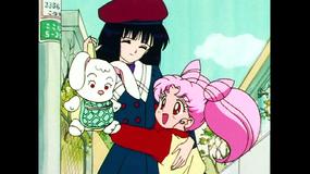 美少女戦士セーラームーンS 第27話