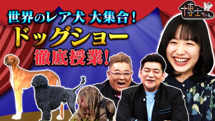 サンドウィッチマン&芦田愛菜の博士ちゃん 2021年2月20日放送