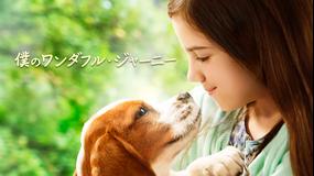 僕のワンダフル・ジャーニー/字幕