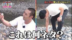 テレビ千鳥 丸い石を探したいんじゃ!!(2020/10/11放送分)