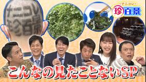 ナニコレ珍百景 2021年10月10日放送
