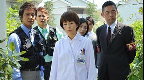 科捜研の女 season13 第01話