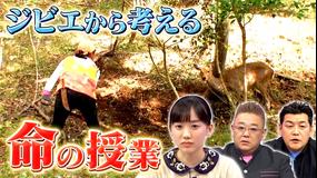 サンドウィッチマン&芦田愛菜の博士ちゃん 2020年12月5日放送