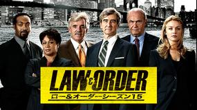 LAW&ORDER/ロー・アンド・オーダー シーズン15 第09話/字幕