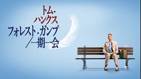 フォレスト・ガンプ/一期一会/吹替【アカデミー賞作品賞】【トム・ハンクス主演】