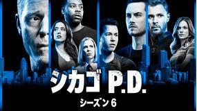 シカゴ P.D. シーズン6/吹替