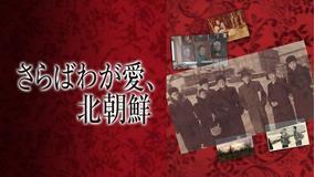 さらばわが愛、北朝鮮/字幕