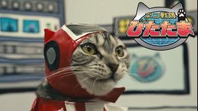 ネコ戦隊びたたま 第01話