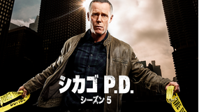 シカゴ P.D. シーズン5/字幕