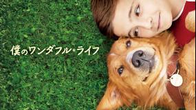僕のワンダフル・ライフ/吹替【ラッセ・ハルストレム監督】