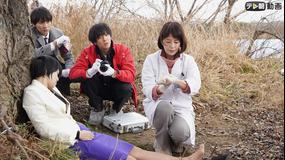 科捜研の女 season19 第33話