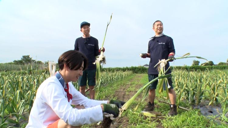 相葉マナブ マナブ!旬の産地ごはん~ジャンボにんにく~&釜-1グランプリ(2021/07/11放送分)