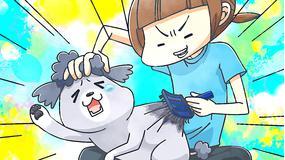 犬と猫どっちも飼ってると毎日たのしい 第06話(最終話)
