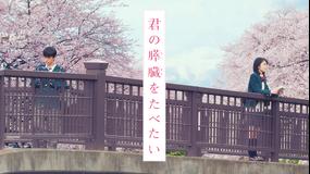 君の膵臓をたべたい【日本アカデミー新人俳優賞】【浜辺美波、北村匠海出演】