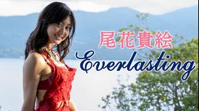 尾花貴絵/Everlasting