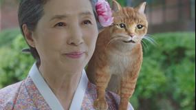 ケリョン仙女伝~恋の運命はどっち!?~ 第02話/字幕