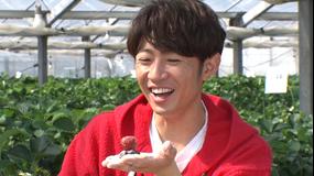 相葉マナブ 釜-1グランプリ&マナブ!旬の産地ごはん~山武市のイチゴ~(2021/04/11放送分)
