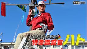 内閣情報調査室 特命調査官・ハト(日曜ワイド)