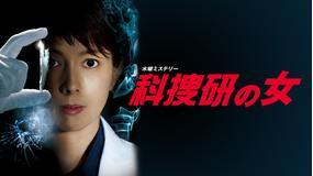 科捜研の女 season12