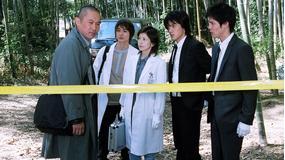 科捜研の女 season5 第01話