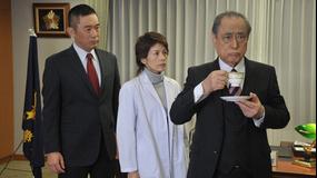 科捜研の女 season11 第15話