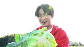 相葉マナブ 釜-1グランプリ&マナブ!旬の産地ごはん~横浜の春キャベツ~(2021/05/02放送分)