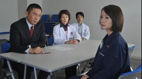 科捜研の女 season11 第08話
