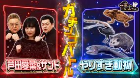 サンドウィッチマン&芦田愛菜の博士ちゃん 2021年2月6日放送