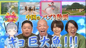 ブイ子のバズっちゃいな! #26【本日のテーマ】中国の衝撃バズり動画SP(2021/04/14放送分)
