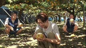 相葉マナブ マナブ!旬の産地ごはん~市川の梨~(2020/09/20放送分)