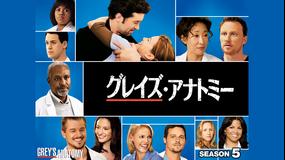 グレイズ・アナトミー シーズン5/字幕