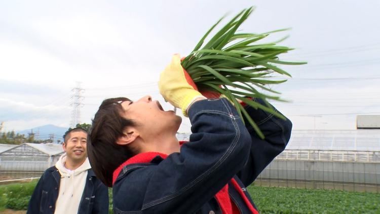 相葉マナブ 釜-1グランプリ&マナブ!旬の産地ごはん~海老名のニラ~(2021/05/23放送分)