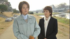 科捜研の女 season11 第12話