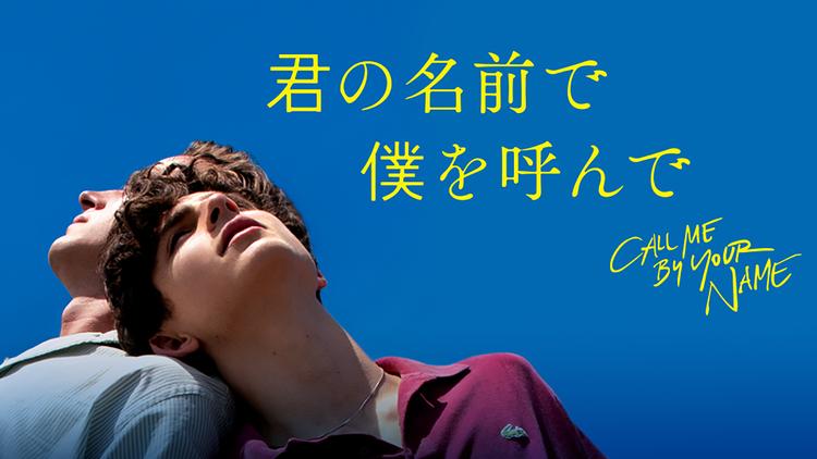 君の名前で僕を呼んで/字幕【アカデミー賞脚色賞受賞】