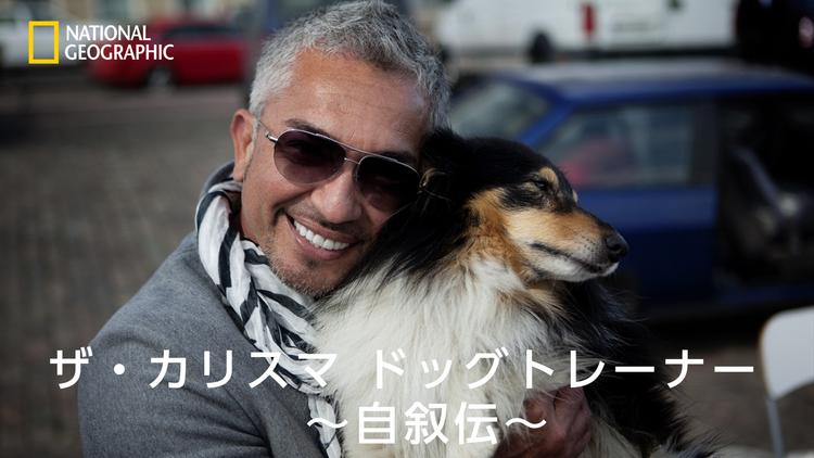 ザ・カリスマ ドッグトレーナー 自叙伝/字幕