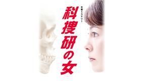科捜研の女 season10