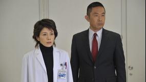 科捜研の女 season11 第16話(最終話)