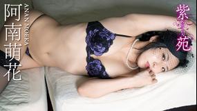 阿南萌花/紫苑