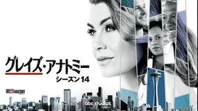 グレイズ・アナトミー シーズン14/吹替