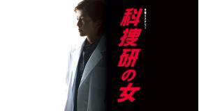 科捜研の女 season9