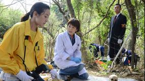 科捜研の女 season13 第06話