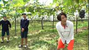 相葉マナブ マナブ!旬の産地ごはん~千葉のぶどう~&釜-1グランプリ(2021/09/19放送分)