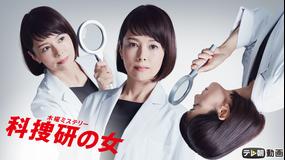 <見逃し>科捜研の女 season19