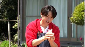 相葉マナブ 釜-1グランプリ&マナブ!旬の産地ごはん~白子の新玉ねぎ~(2021/05/09放送分)