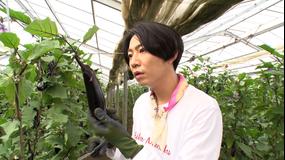 相葉マナブ マナブ!旬の産地ごはん~ナス~&釜-1グランプリ(2021/08/15放送分)