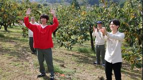 相葉マナブ マナブ!旬の産地ごはん~柿~&釜-1グランプリ(2021/10/17放送分)