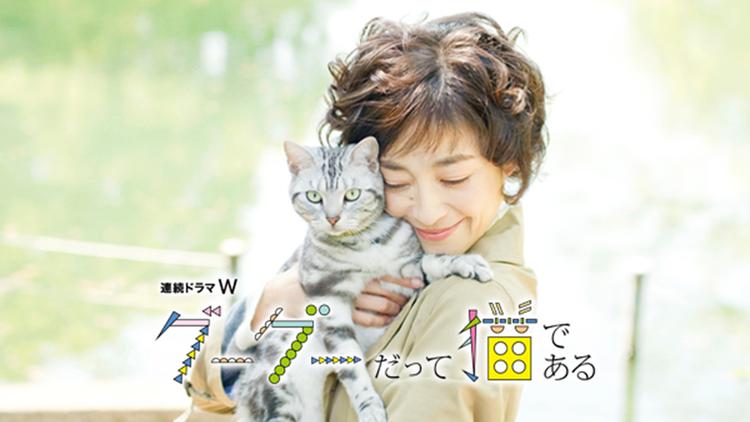 連続ドラマW「グーグーだって猫である」